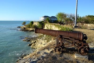 Fort James Fort Cannons