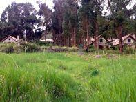 Las Casitas del Colca Garden Field