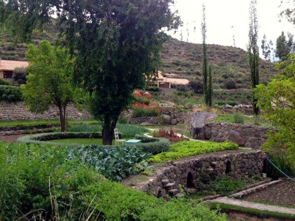 Las Casitas del Colca Garden