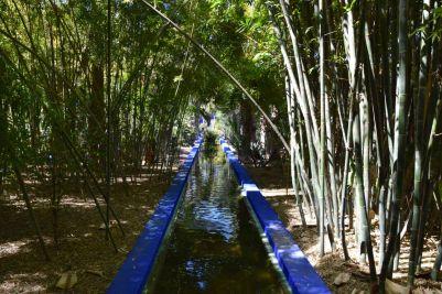 Majorelle Garden Pond