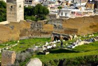 Merenid Tombs Herder