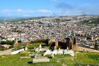 Merenid Tombs View