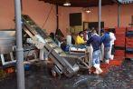 Mendoza Clos de Chacras Processing