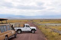Ngorongoro Crater Rhino Road Block