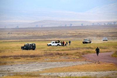 Ngorongoro Crater Rhino Treatment
