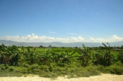 Haiti Road Scene Green