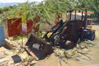 Haiti Road Scene Tractor and Goat