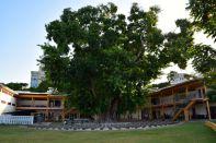 Dar es Salaam National Museum Courtyard