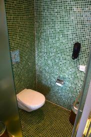 Hyatt Regency Dar es Salaam Bathroom Toilet