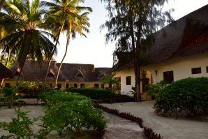 Next Paradise Zanzibar Path
