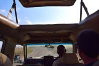 Serengeti Truck View
