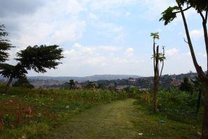Kampala Mengo Palace Garden