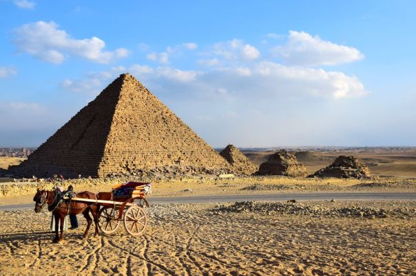 An empty horse cart at the Pyramids.