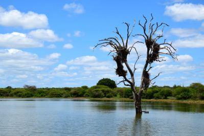 Self Drive Hippo Lake