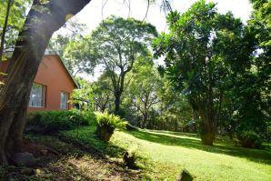 Mantenga Lodge Lawn