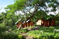 Lodges hidden in the trees