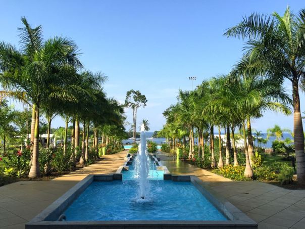 A true oasis.