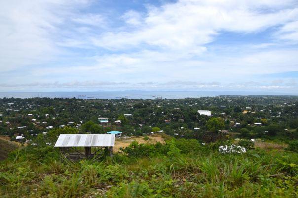 Solomon View