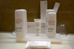 radisson-blu-mbamou-palace-room-amenities