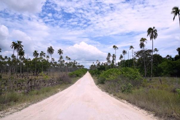 vanuatu-santo-tour-airstrip