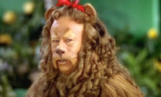 Cowardly-Lion1