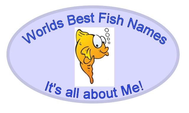 Fish nams viet nam fish dead 2017 fish tank maintenance for Names for pet fish
