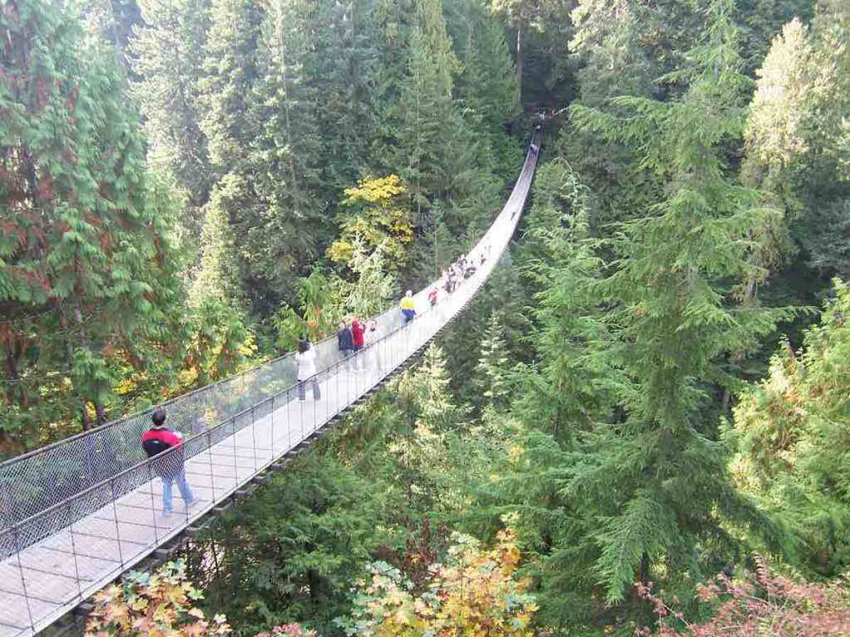 Top 6 Things To Do In Vancouver Wow Travel
