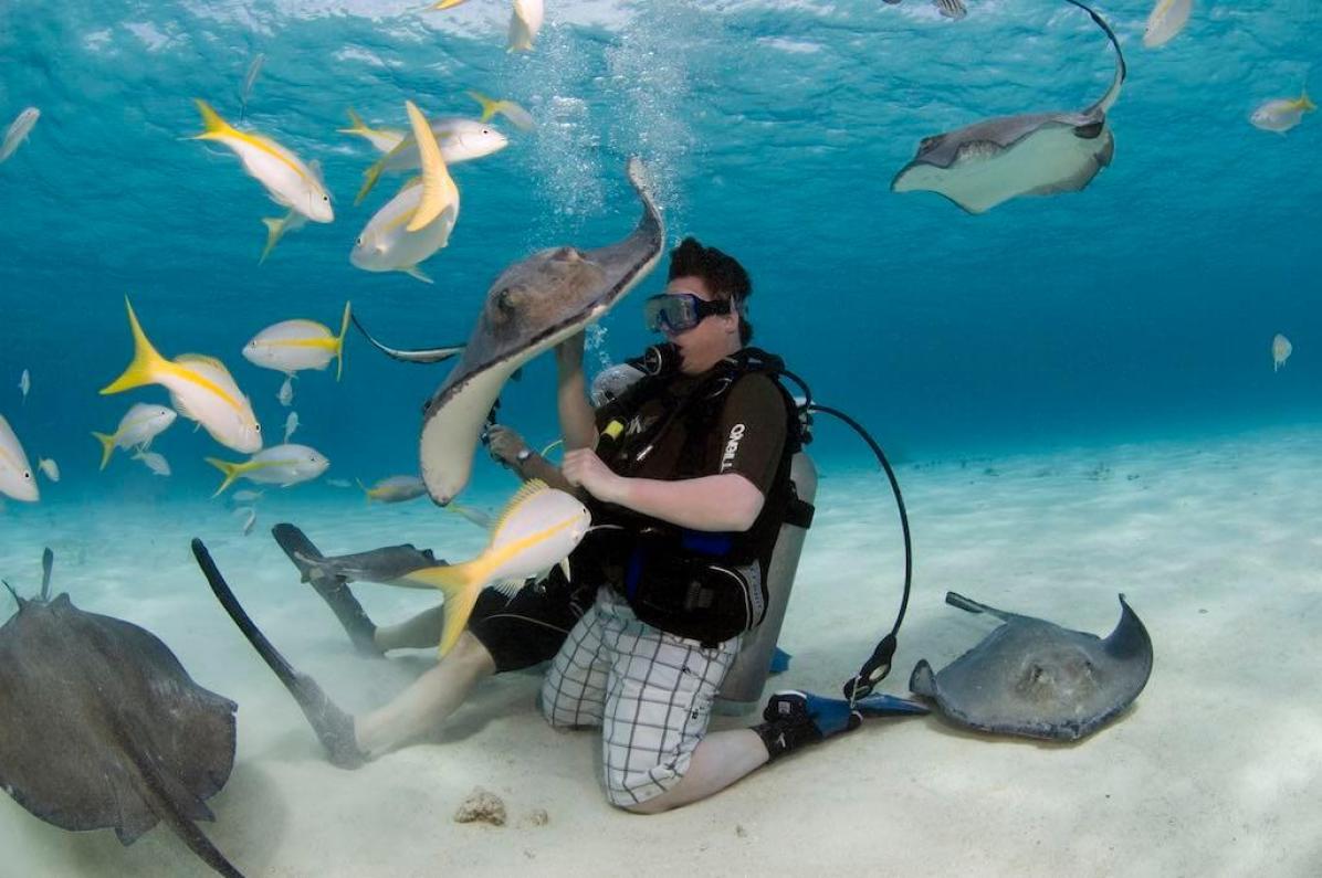 Diving, Cayman Islands - by Kfulgham84:Wikimedia