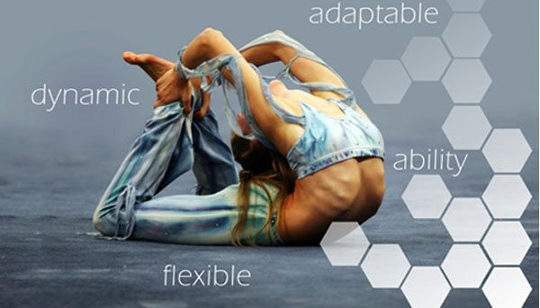 WordPress-Flexibility-and-extensibility