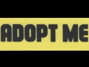 adopt-me-feature
