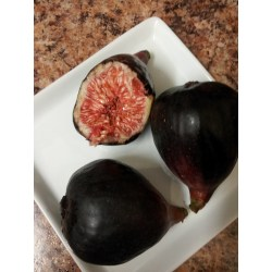 Small Crop Of How To Eat A Fig