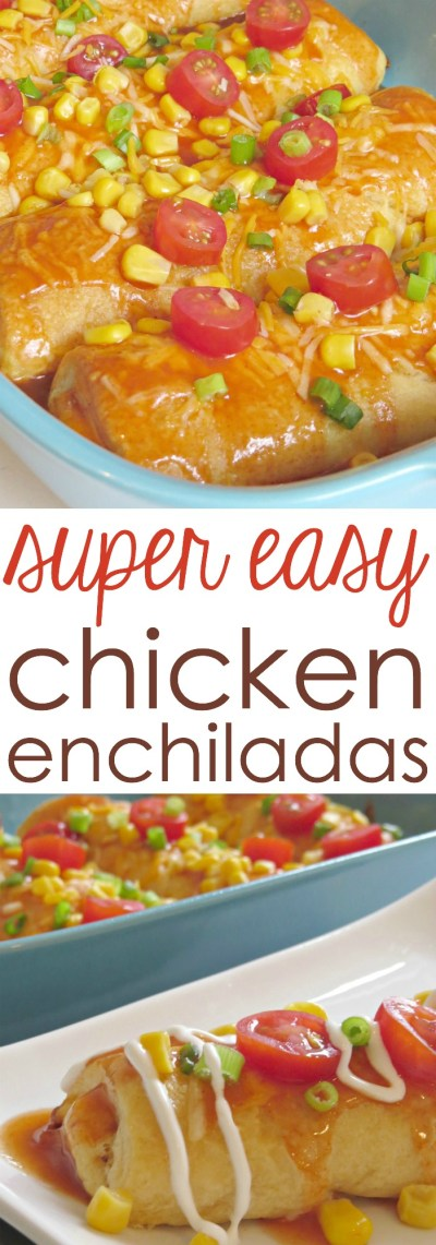 Try the Best Chicken Enchilada Recipe This Week - Written Reality