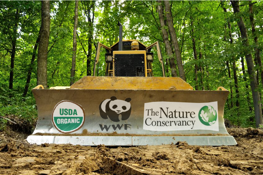 Risultati immagini per conservation mainstream grong kind of green