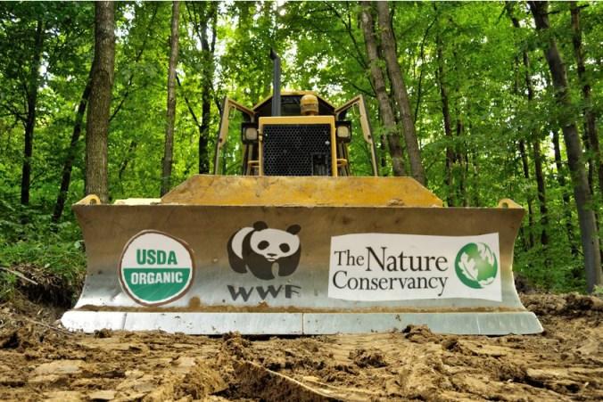Beyond Greenwashing