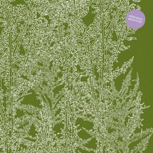 Villalobos' 2003 album Alcachofa