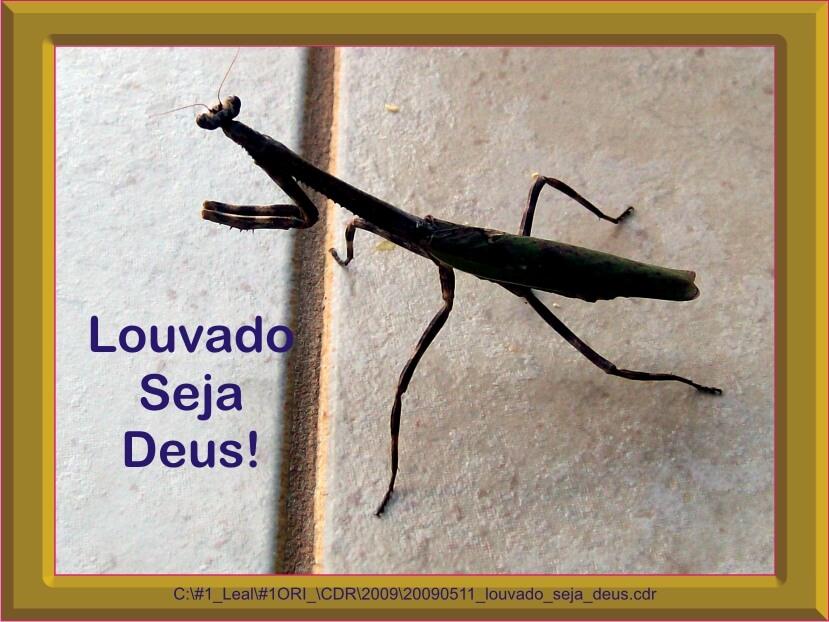 20090511_louvado_seja_deus