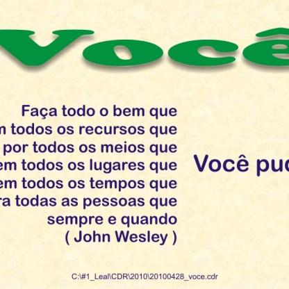 20100428_voce