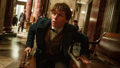 Photo of Does this mean Newt Scamander is coming back to Liverpool?