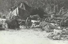 destroyed refugee trek