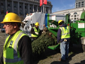 Where to recycle Bay Area Christmas trees