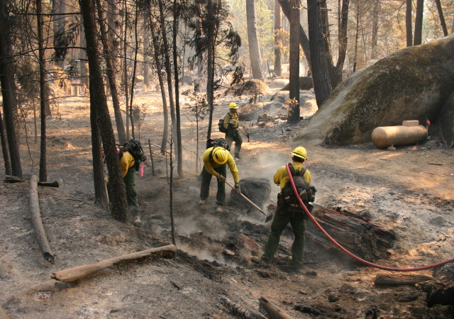 The Rim Fire has consumed more than 237,341 acres and is 80 percent contained. (Grace Rubenstein / KQED)