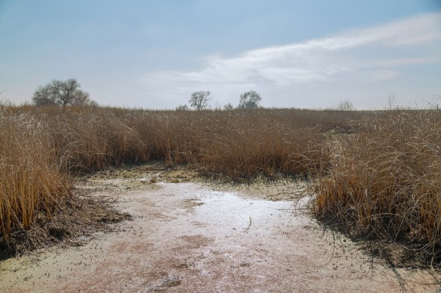 A dry stretch of the San Joaquin River near Los Banos. (Josh Cassidy/KQED)
