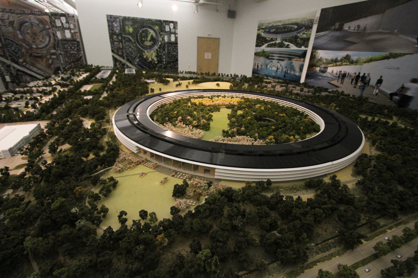 apple has a roomsize model of the new campus in building on site cupertino office
