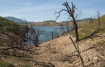 New Melones Lake, on the Stanislaus River upstream of Modesto, was less than one-quarter full in April 2015.
