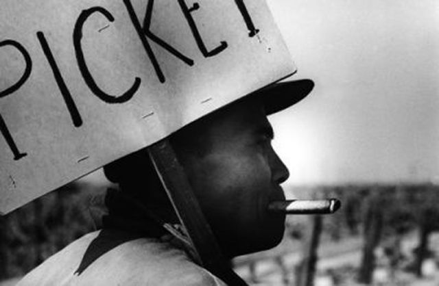 A picketing Filipino farmworker in 1965.