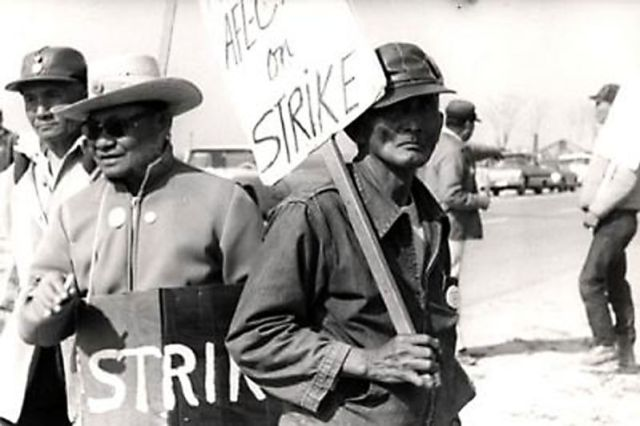 Filipino farmworkers were the first to walk out of vineyards in 1965, prompting the Delano Grape Strike and, ultimately, the formation of the United Farm Workers along with Mexican farmworkers led by Cesar Chavez.