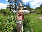 Hobbit scarecrow!