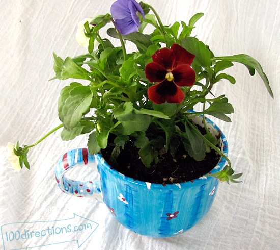 hand painted tea cup flower pot with patriotic pansies