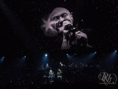 phil collins rkh images (16 of 44)