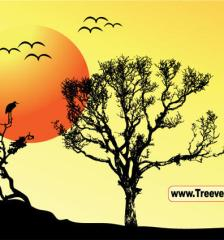 161_sunset-vector-tree-background-l